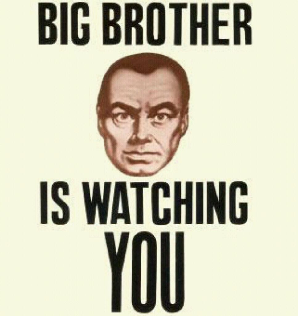 George Orwell's 1984 essay help?
